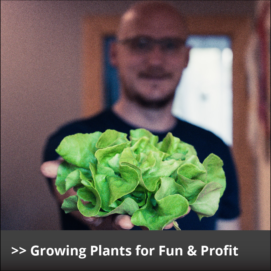 Growing Plants for Fun Profit